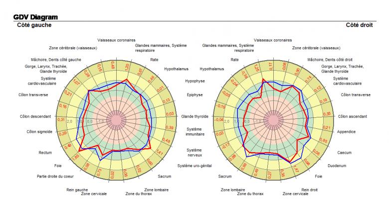 La zone verte étant la zone d'équilibre, si l'une des 2 courbes (rouge/état émotionnel ou bleue/état physique) sort de cette zone, l'organe pointé est à rééquilibrer.